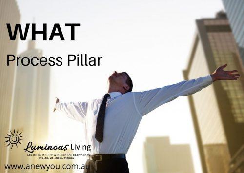 SAVVY START UP WHAT PROCESS PILLAR